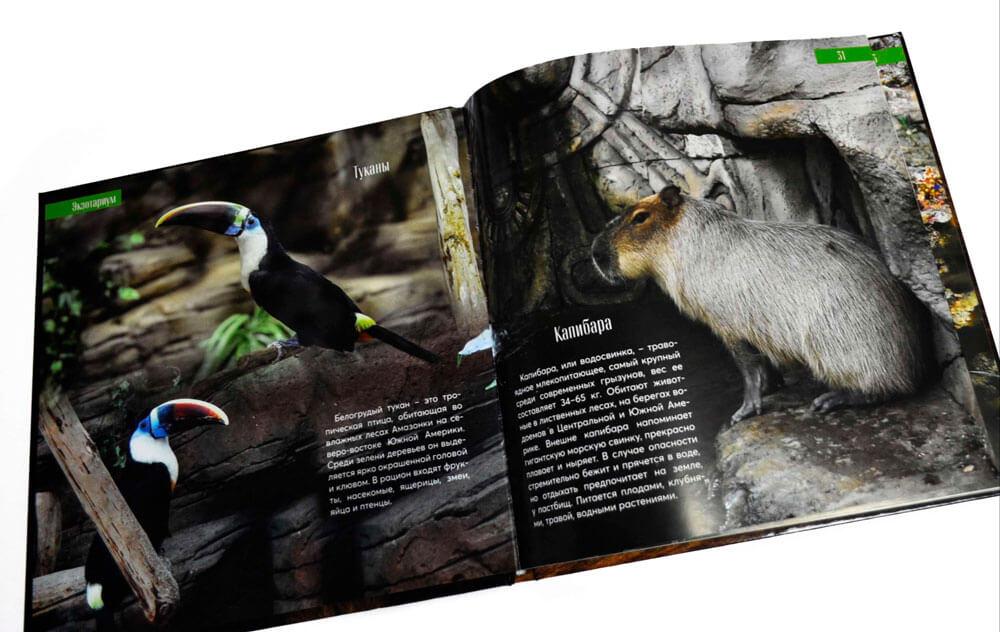 """Книга """"Минский зоопарк"""" от издательства Сегмент из Минска фото6"""